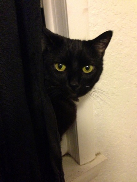 looking at me?