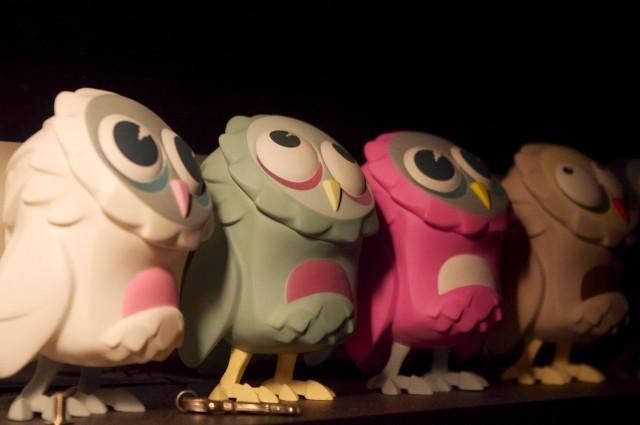 Superb Owls